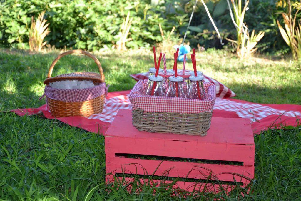 tovaglia-picnic-cestino