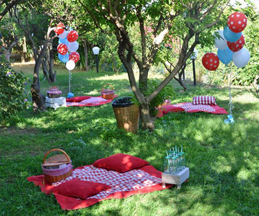 citrus-grove-picnic-birtday-party-events-tablecloth-red