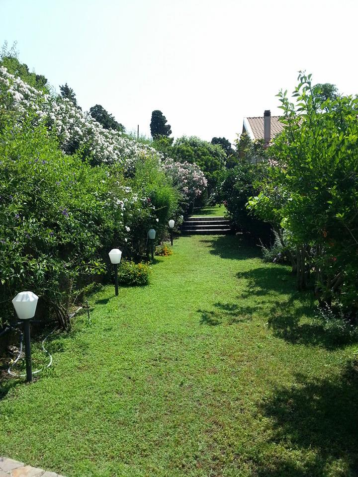 cesped-villa-messina-jardin-sicilia