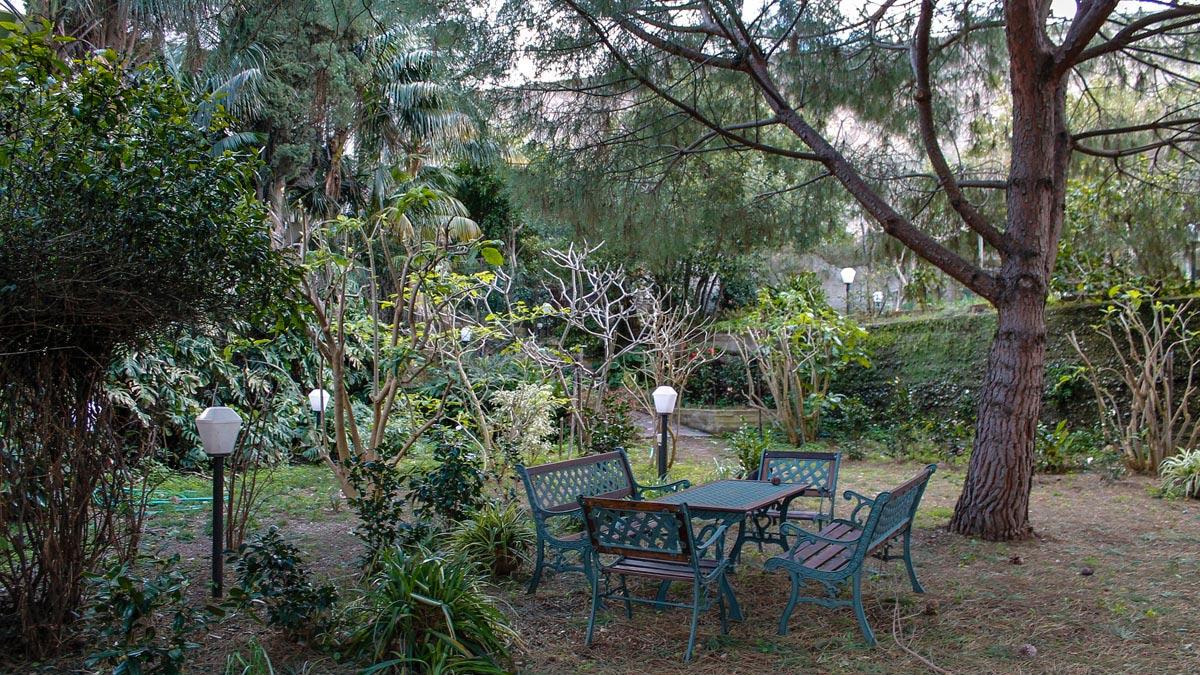 El pinar for Asociacion pinar jardin