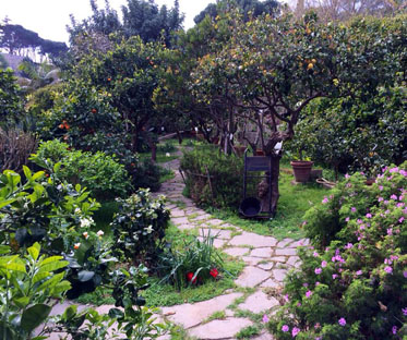 giardino-agrumeto-arance-villa-messina